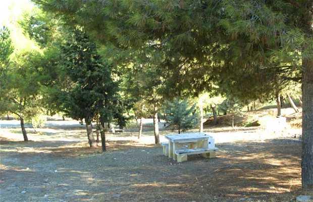 Zona Recreativa Pantano de la Viñuela
