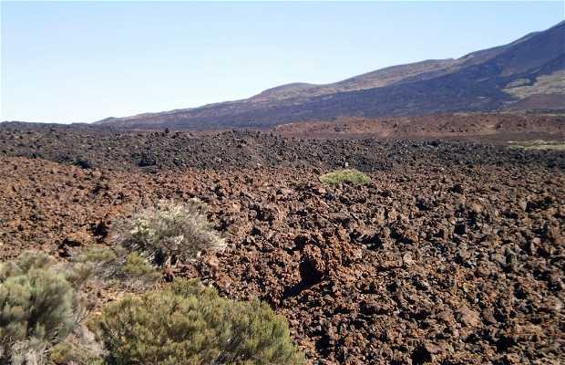 Boca de Tauce a Tenerife