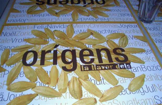 Restaurante Les Llavors dels Orígens