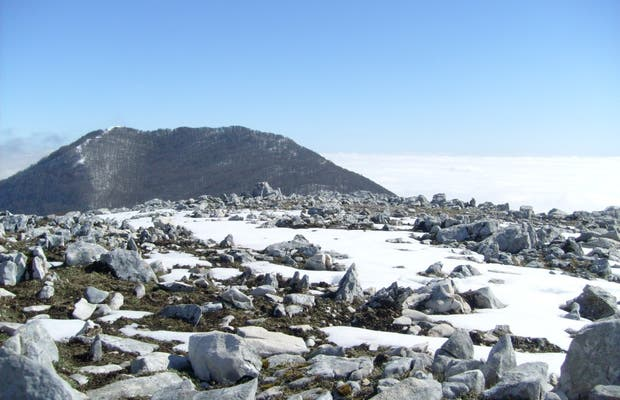 Monte Capreo