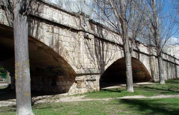 Puente Pasarela de Villalobón