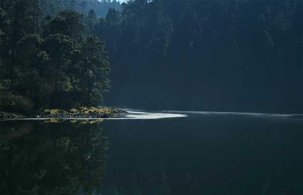 Laguna de Zempoala