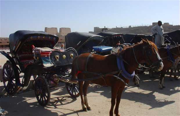 Passeio de Corniche