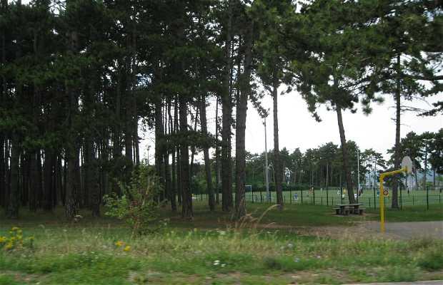 Parcours de santé de Brabois