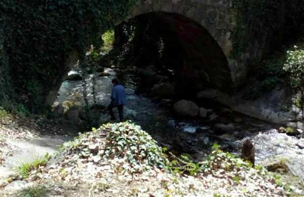 Garganta de San Gregorio