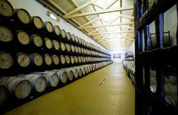 El Lagar de Isilla Winery