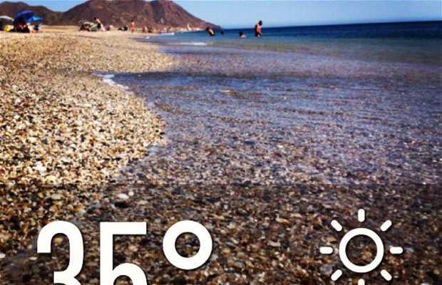 Playa de las Salinas de Cabo de Gata