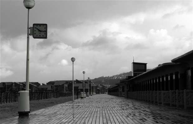 paseo Michel d'Ornano