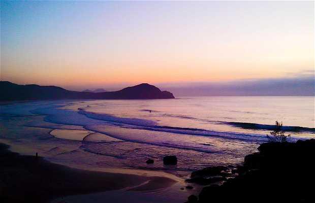 Playa del Rosa