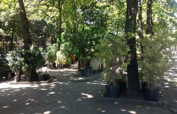 Praça Paul Claudel