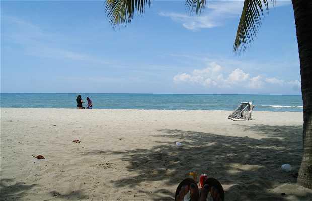 Palma Real beach