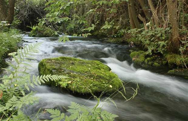 Trevélez River