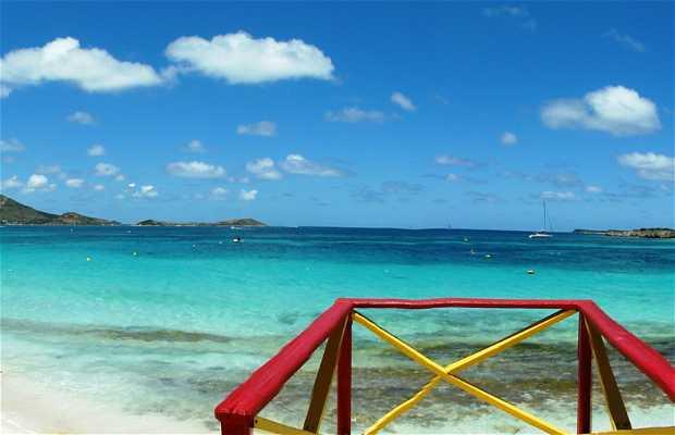 Saint Martin, Antillas