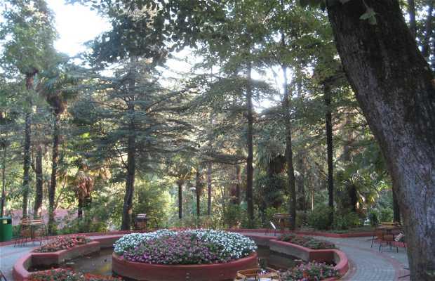 Parque Natural de aguas termales