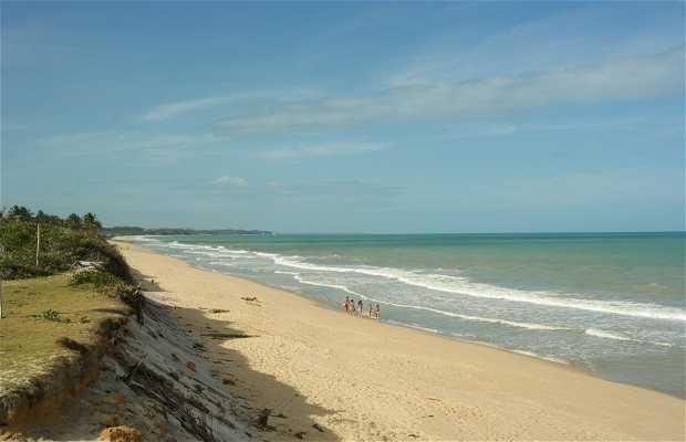 Praia do Novo Prado