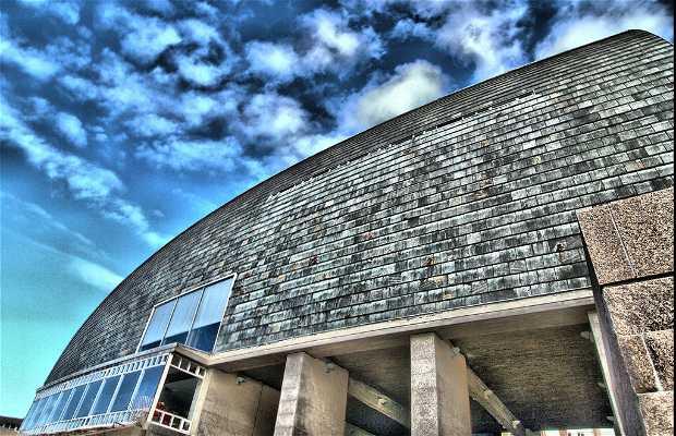 Domus (Museu do Homem)