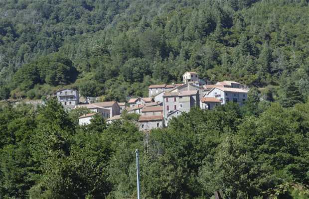 Concatta