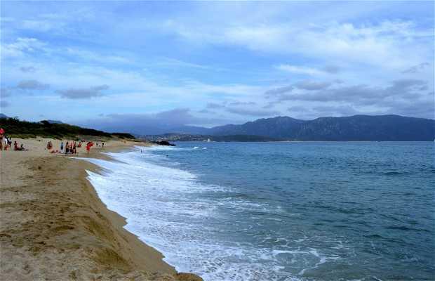 Playa Punta Di Cappicciolo