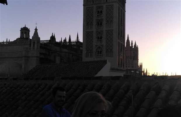 Terraza Hotel Doña Maria En Sevilla 1 Opiniones Y 1 Fotos