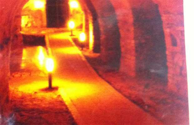 Cuevas de Camerano