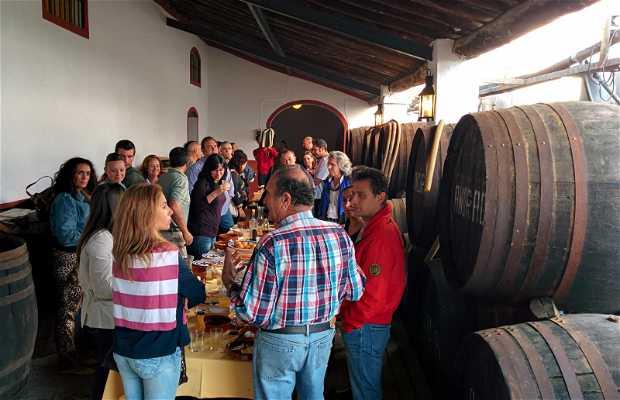 Semana de Viticultura y Enología Condado de Huelva