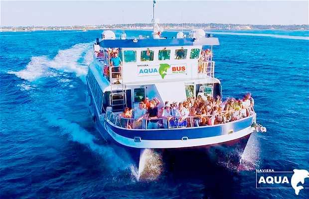 Aquabus Ferry Boats - Ibiza / Formentera