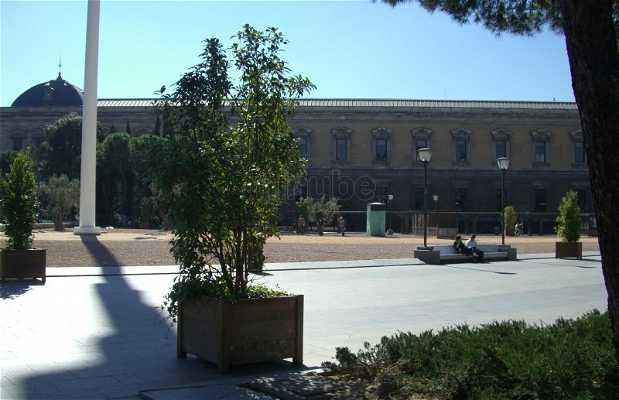 La Plaza de Colón