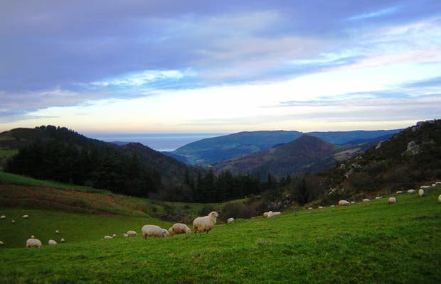 Contrée de Monte Ernio