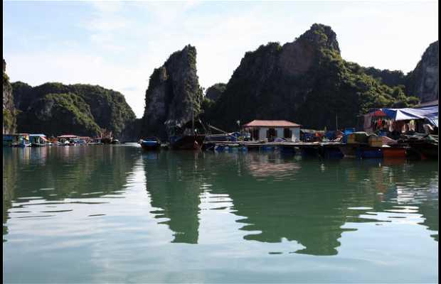 Pueblo Pesquero De Vung Vieng