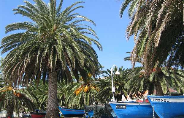 Playa de Santa Cruz