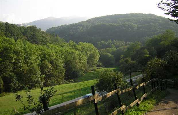 Le jardin Botanique d'Iturraran