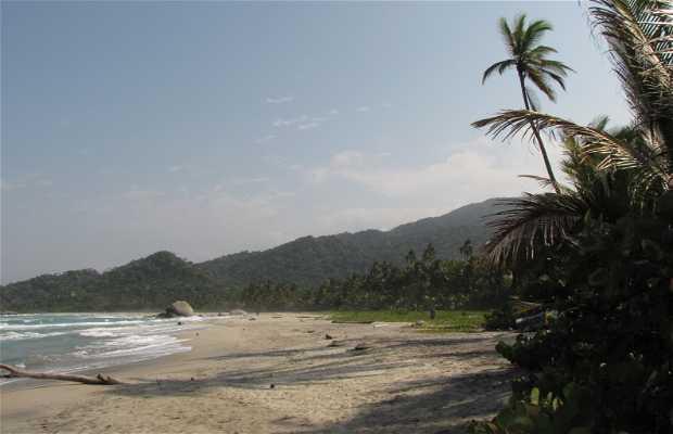 Spiaggia Naturista - Parco Tayrona Granate