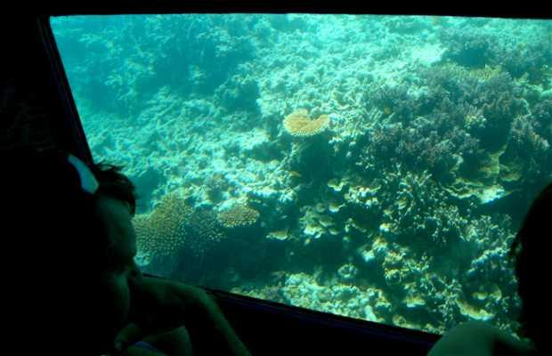 Fantasea Reefworld, visita alla Grande Barriera Corallina