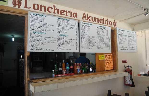 Loncheria Akumalito