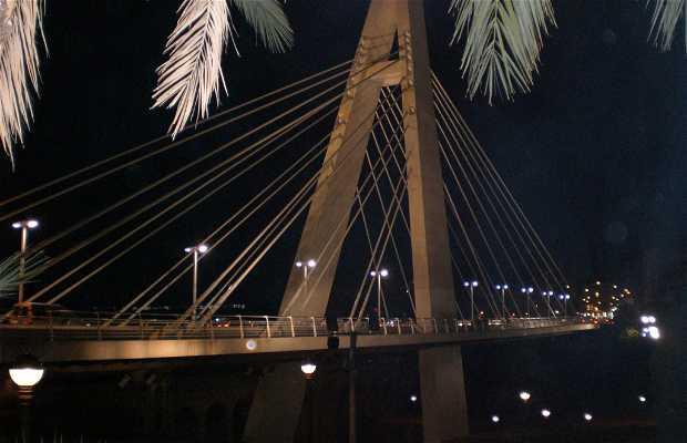 Puente Bimilenari