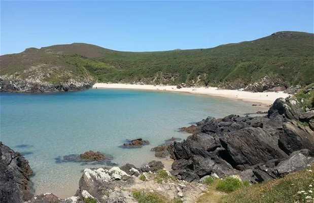 Playa Pantin