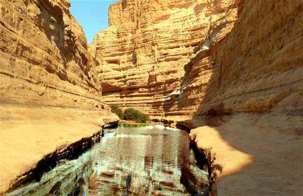 Parque Natural Ein Avdat