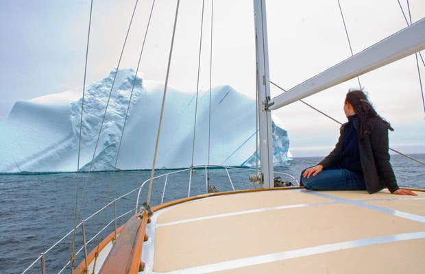 Icebergs à Terranova