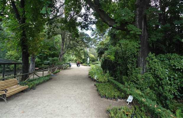 Parque Isidora Cousiño