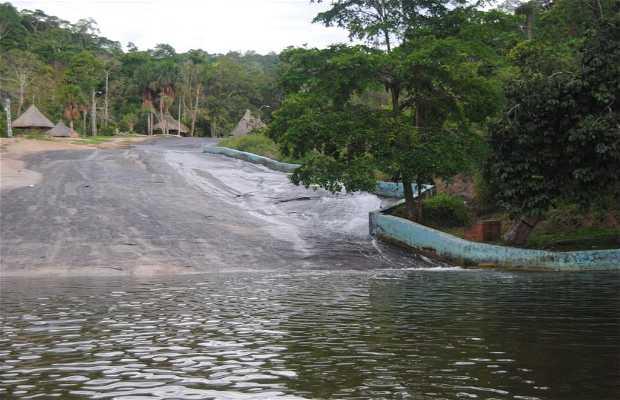 Tobogán de la Selva