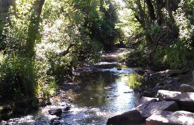Parque Fluvial Río Pícaro