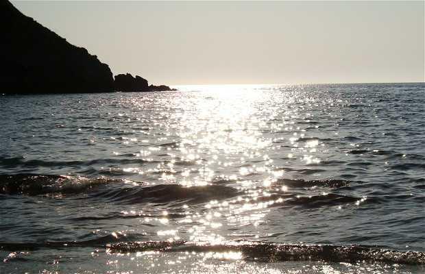 Playa de Calvi