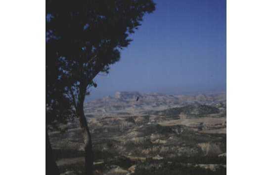 Santuario de Sancho Abarca