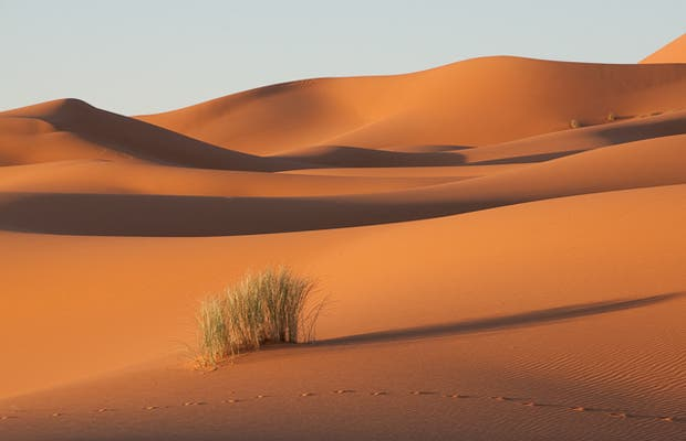 Merzouga Dunes