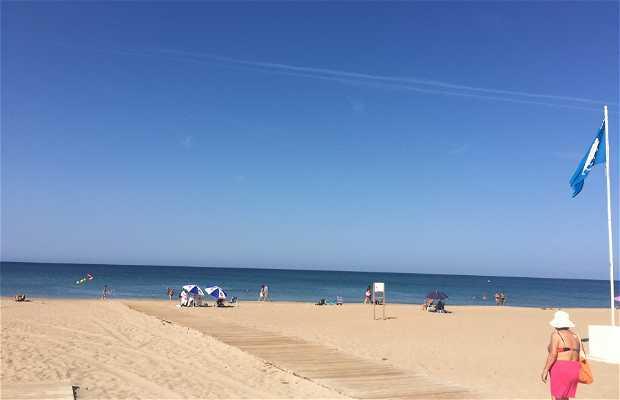 Playa Molinos y Palmeras - Punta dels Molins