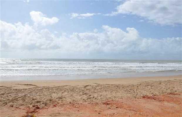 Praia do Toco