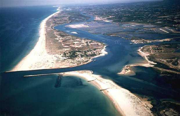Laguna de Ría Formosa