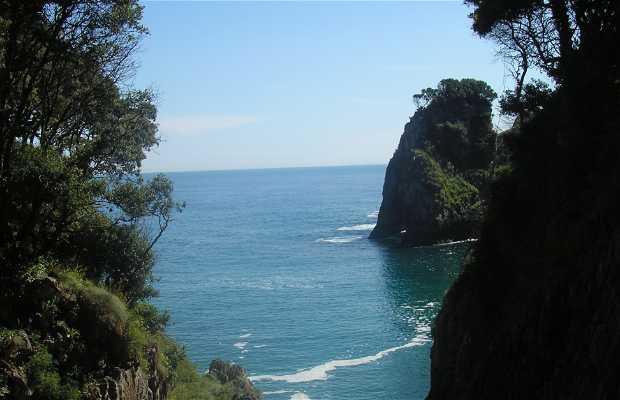 Caverna di El Pindal