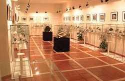 Centre thématique des Sciences naturelles d'arnedo