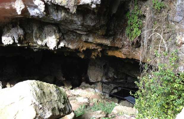 Cueva De El Pendo